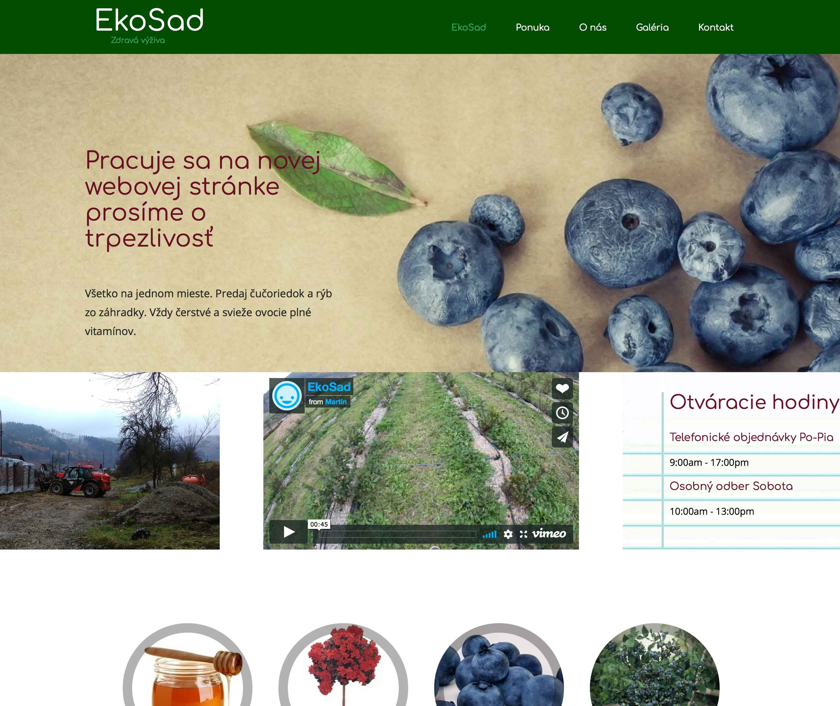 Preview Ekosad website before redesign